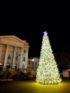 Новогодняя елка на Приморском бульваре в Севастополе