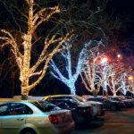 Новогодние украшения деревьев на площади Нахимова в Севастополе