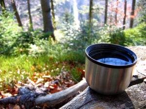 Чай из термоса на природе в лесу