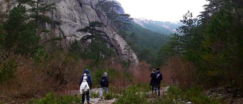 Прогулка по живописному ущелью Уч-Кош в Крыму