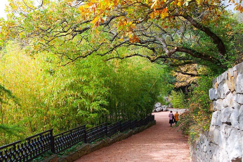 Парк Монтедор в Крыму