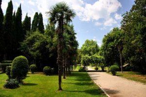 Мисхорский парк в Крыму