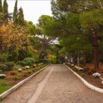 Форосский парк в Крыму