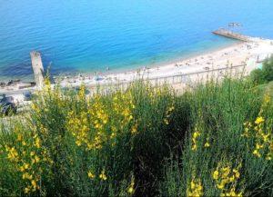 пляж Толстяк в Севастополе