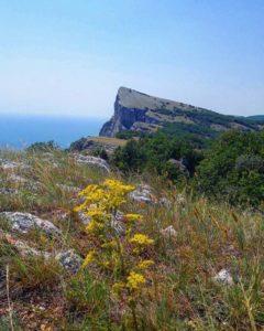 Форосский кант в Крыму