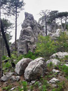Окрестности скалы Шаан-Кая в Крыму