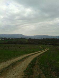 Дорога в Байдарской долине