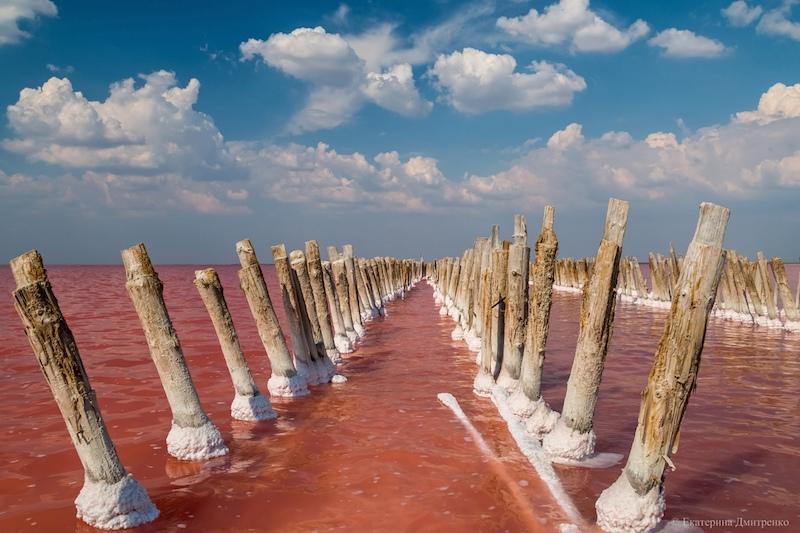 Розовое озеро Сасык-Сиваш летом в Крыму