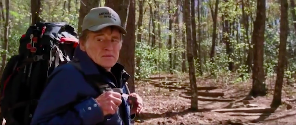 """Кадр из фильма """"Прогулка по лесам"""" мужчина с рюкзаком"""