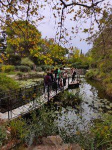Фаросский парк в Крыму