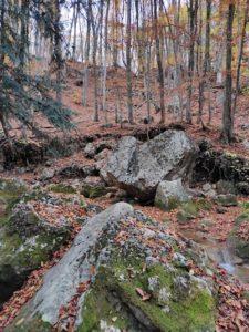 Камень в виде сердца в Большом каньоне