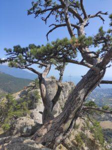 Крест на скале Ставри-Кая
