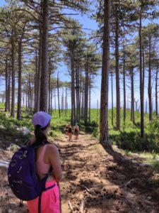 Туристы поднимаются по тропе к Шана-Кая